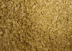 Are Oats Safe to Eat on a Gluten Free Diet