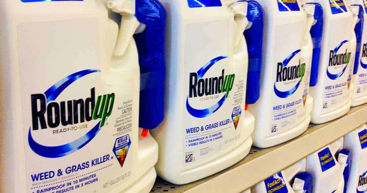 roundup - Does the chemical glyphosate (Roundup) mimic gluten sensitivity?
