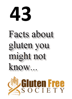 43 Facts about gluten Dr. Osborne