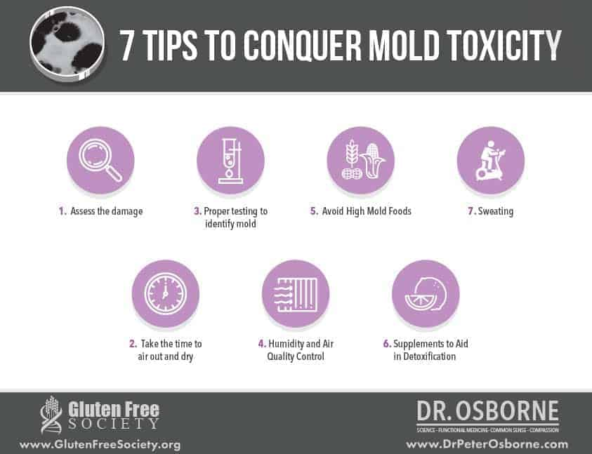 Avoiding mold toxicity