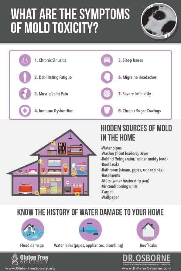 Symptoms of mold toxicity