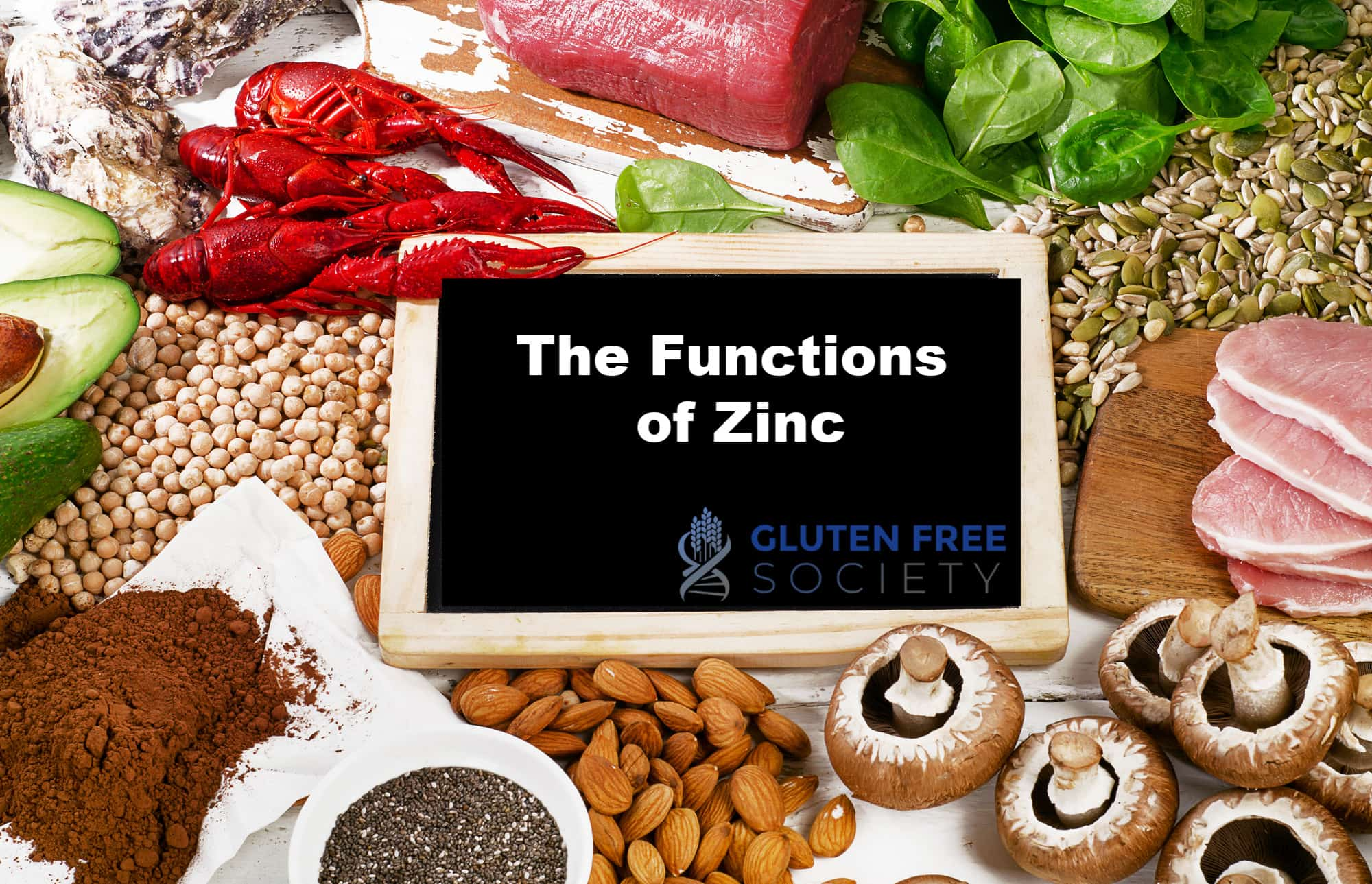 the functions of zinc - What Are The Functions of Zinc?