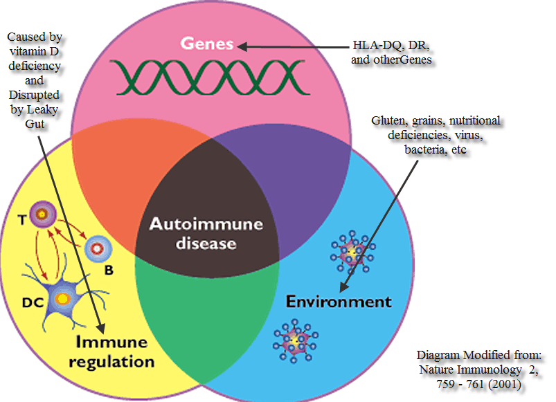 Autoimmune disease diagram