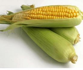 Corn gluten prolamin - zein