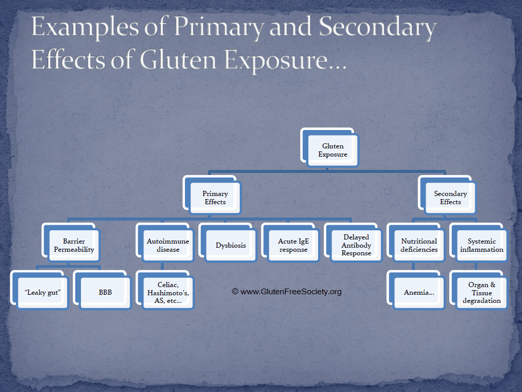 Effects of gluten exposure