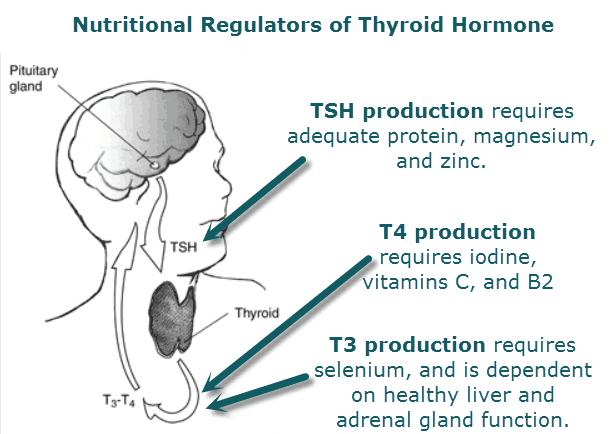 can diet affect thyroid