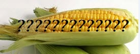 corn gluten hidden ingredients
