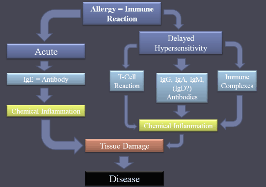 delayed food allergy
